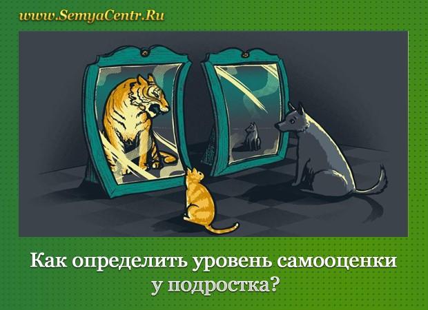 Кошка и собака смотрят в зеркала